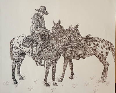 Norco Ride Original by Suzanne Francis