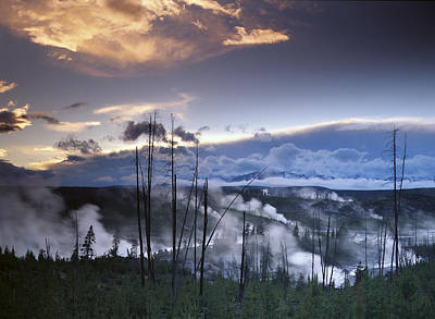 Photograph - Norris Geyser Basin With Steam Plumes by Tim Fitzharris