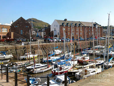 Photograph - North Berwick Harbour by Yvonne Johnstone