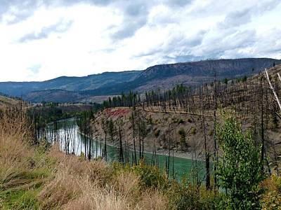 North Thompson Photograph - North Thompson River 2 by Will Borden