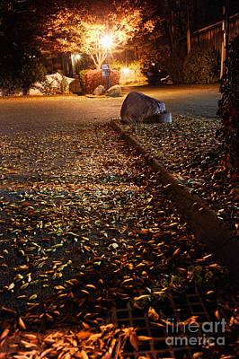 Northampton's Autumn Leaves At Night Art Print
