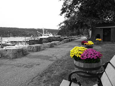 Photograph - Northeast Harbor by Kelly Reber