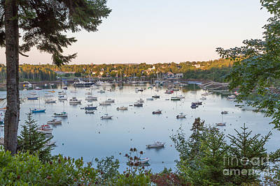 Photograph - Northeast Harbor by Susan Cole Kelly