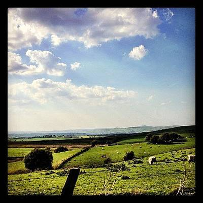Sheep Photograph - #northwales #landscape #hill #hills by Miss Wilkinson