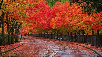 Northwest Autumn Art Print by Ken Stanback