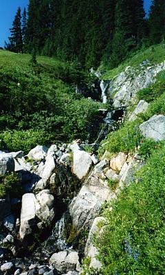 Photograph - Northwest Stream by C Sitton