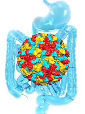 Norwalk Virus Infection Art Print by Laguna Design