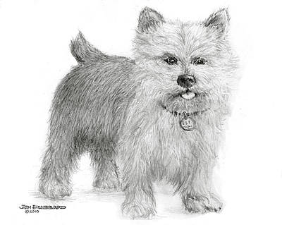 Art Print featuring the drawing Norwich Terrier by Jim Hubbard