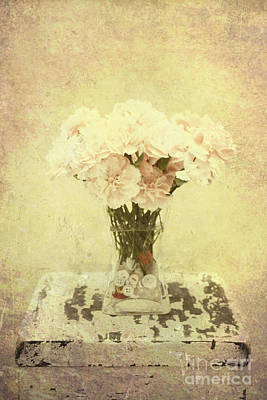 Photograph - Nostalgia by Traci Cottingham