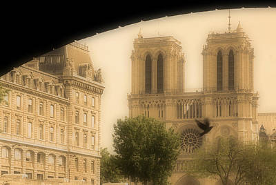Notre Dame Cathedral Viewed Art Print by John Sylvester
