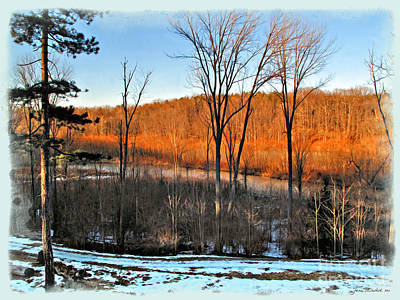 Medina Lake Photograph - November In The Park by Joan  Minchak