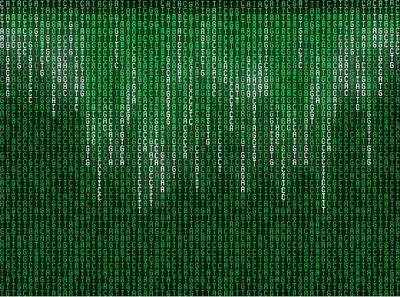 Matrix Code Photograph - Nucleotide Base Matrix by Pasieka