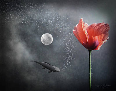 Koi Digital Art - Numinous Reflection by Karen Casey-Smith