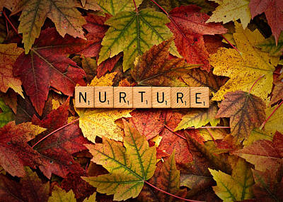 Photograph - Nurture-autumn by  Onyonet  Photo Studios