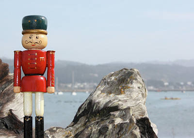 Photograph - Nutcracker In Half Moon Bay by Susan Alvaro