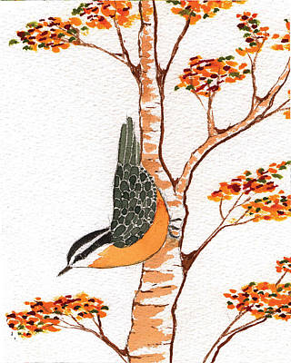 Lady Who Loves Birds Painting - Nuthatch Four by Alexandra  Sanders