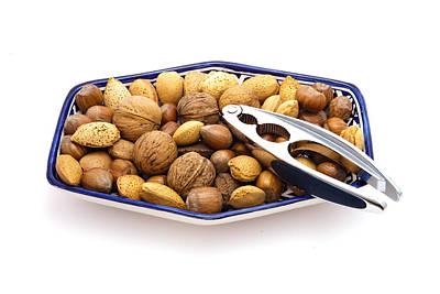 Nuts Art Print by Tom Gowanlock