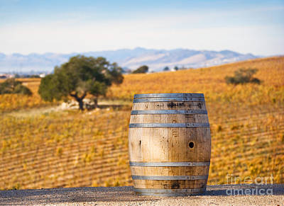 Oak Barrel At Vineyard Art Print by David Buffington