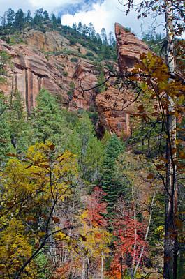 West Fork Photograph - Oak Cliff by Brian Lambert