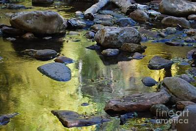 Photograph - Oak Creek Reflection by Tam Ryan