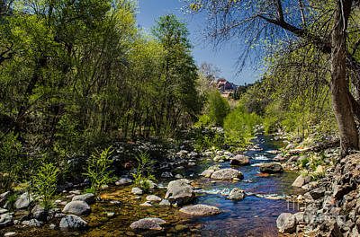 Oak Creek Art Print by Robert Bales