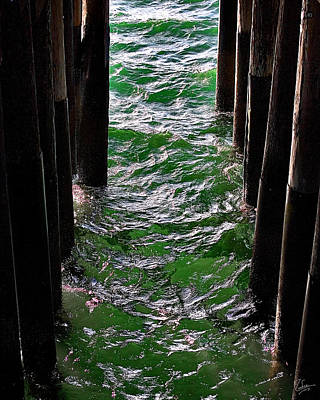 Photograph - Ocean Pier by Endre Balogh
