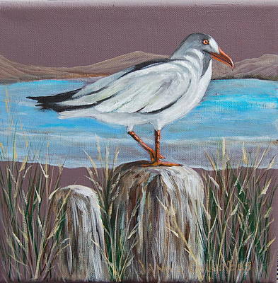 Ocean Sea Gull Art Print by Janna Columbus