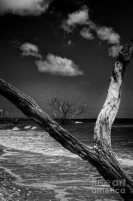 Photograph - Ocean View by David Waldrop