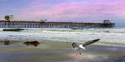 Photograph - Oceanside by Chris Lord