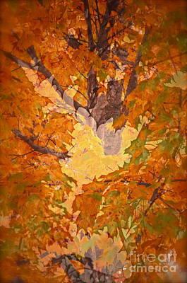 October In Washington Art Print by Gwyn Newcombe