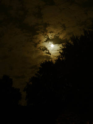 Photograph - October Moon With Golden Clouds by Connie Fox