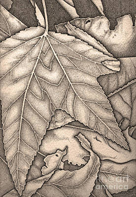 Drawing - October Sepia by Nora Blansett