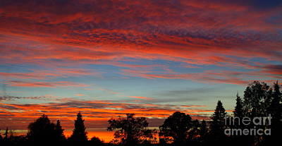 Photograph - October Sky 1 by Michael Canning