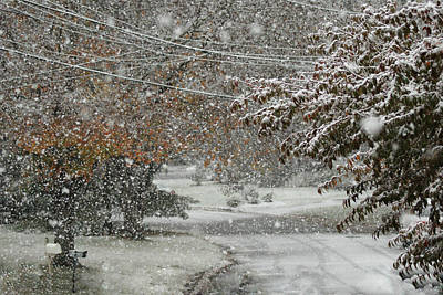 Photograph - October Snow by Margie Avellino
