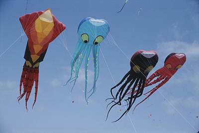 Octopus And Squid-shaped Kites Fly Art Print by Stephen Sharnoff