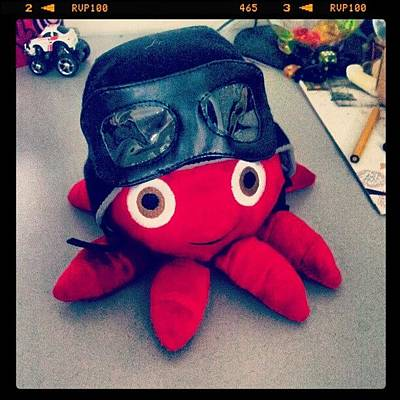 Octopus Wall Art - Photograph - #octopus #cute #red #black #helmet by Bryan Thien