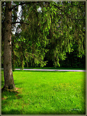Photograph - Ohio Spring Pathway by Joan  Minchak