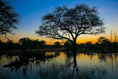 Photograph - Okavango by Andy Bitterer