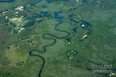 Photograph - Okavango Delta 5 by Mareko Marciniak