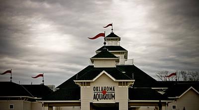 Oklahoma Aquarium Art Print by Toni Hopper