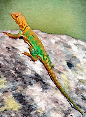 Oklahoma Painting - Oklahoma Collared Lizard by Jeff Kolker