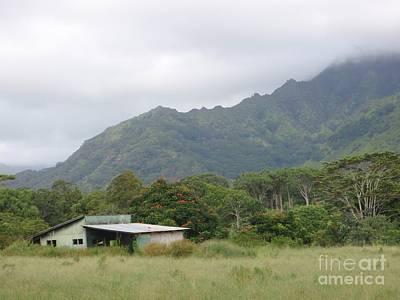 Global Design Shibori Inspired - Old Barn in Kapahi by Mary Deal