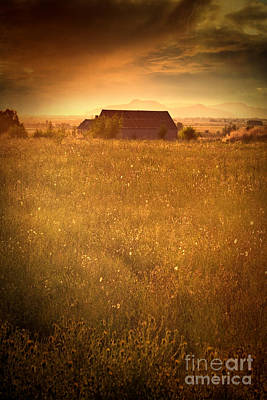 Photograph - Old Barn On The Prairies At Sunset by Sandra Cunningham