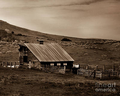 Photograph - Old Barn by Robert Bales