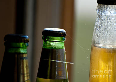 Photograph - Old Beer Bottles  by Wilma  Birdwell