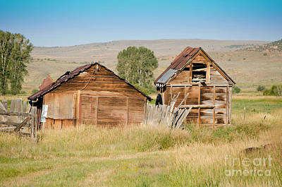 Photograph - Old Building Woodruff Utah by Donna Greene