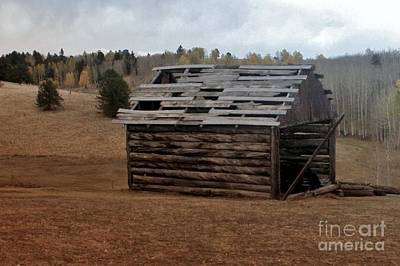 Old Cabins Photograph - Old Cabin by Ellen Heaverlo