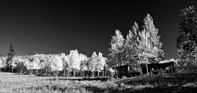 Photograph - Old Cabin In The Aspen by Ellen Heaverlo