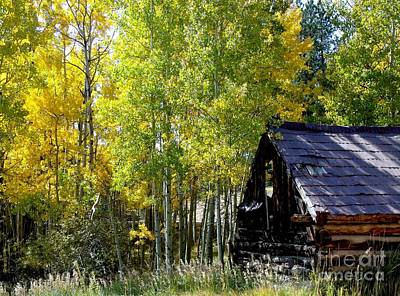 Old Cabin In The Golden Aspens Art Print by Donna Parlow