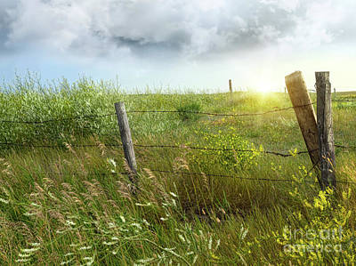 Old Country Fence On The Prairies Art Print by Sandra Cunningham